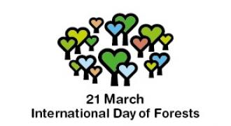International Day of Forests 2020: Forests and Biodiversity