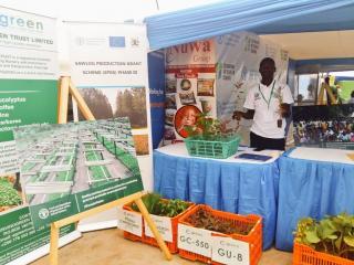 Wilson Koma- a representative of Kangulumira Clonal Nursery, one of the FAO/SPGS III certified nurseries displays seedlings at the FAO stall during the Show